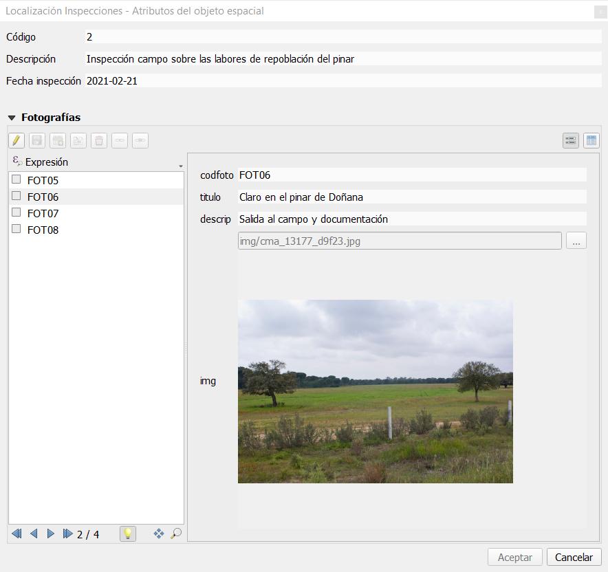 Subformulario QGIS con fotografía