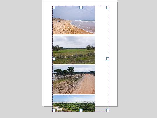 Galería de imágenes dentro de composición de QGIS